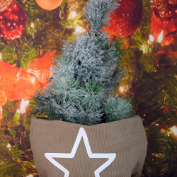 Kerstzak creme met witte opdruk ster