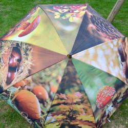 Paraplu met houten handvat en mooi decor van de herfst